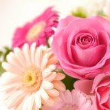 特別な日に気持ちのこもった花を贈ろう
