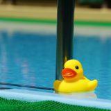 夢占い-夢で、泳ぐことは何を意味するのか?