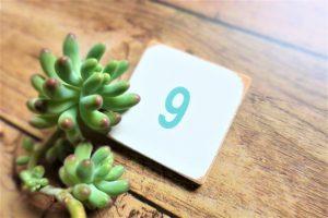 極陽の重なる日!重陽の節句の過ごし方【9月9日】