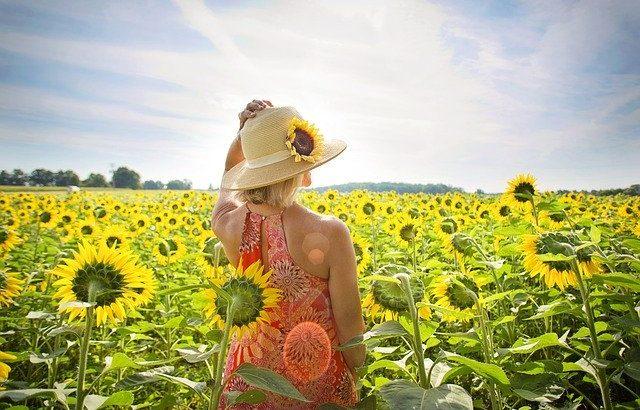 夏の花言葉5選で恋愛運を上げよう!