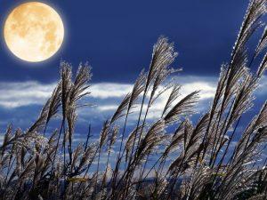 【2020年10月1日】中秋の名月のスピリチュアル的意味や過ごし方は?金運アップも!【十五夜】