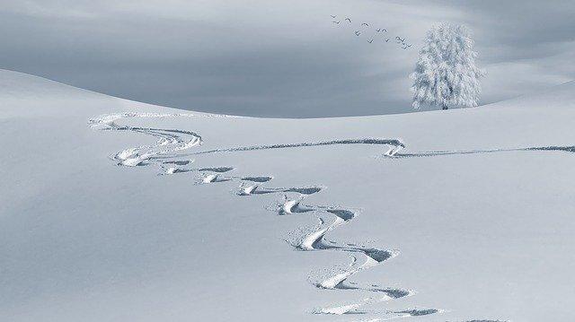 冬にちなんだ夢占い「雪」の夢はどんな意味?