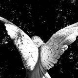 エンジェルナンバー「19」の意味とは?天使はあなたに何を告げようとしているのか?